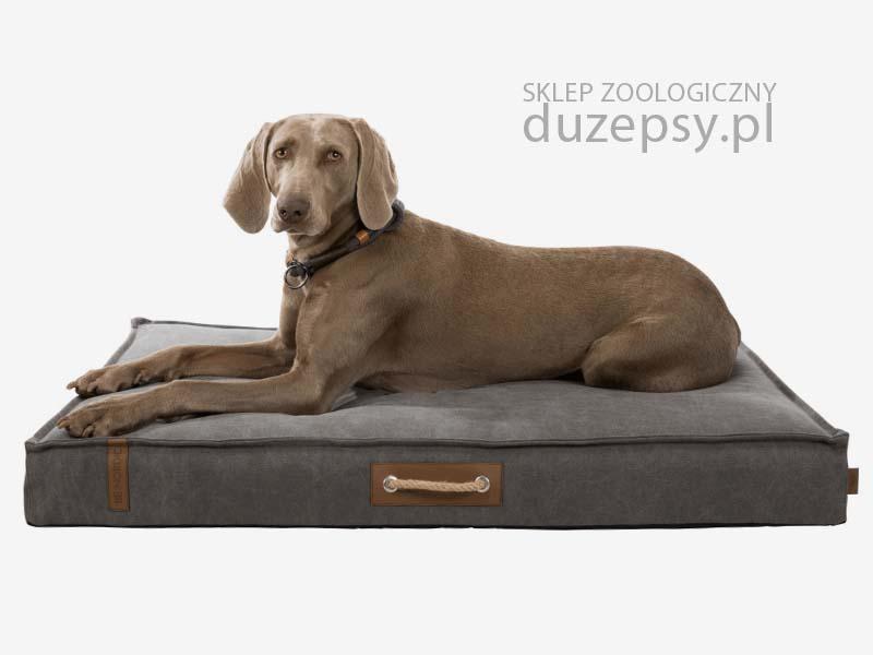 materac dla psa; legowisko dla dużego psa; legowisko dla labradora; legowiska dla dużego psa; legowiska dla psa duże; materac dla dużego psa; materace dla psów; legowisko dla średniego psa; legowiska dla psa promocje, legowiska dla psa przeceny, legowisko dla psa sklep; legowisko dla psa 100x70; legowiska dla psa trixie; legowisko dla psa wyprzedaż; legowisko dla psa boksera; wygodny materac dla psa; materac piankowy dla psa; matetac dla psa duży; legowisko dla psa outlet