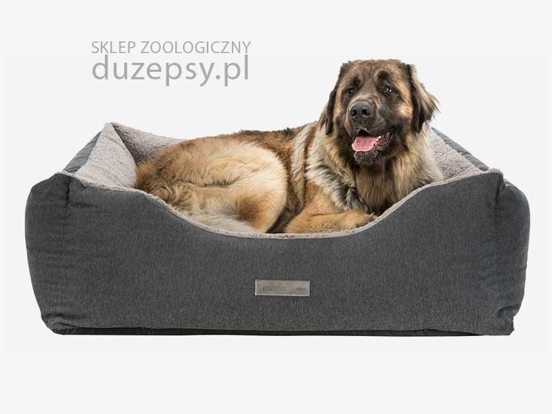 ortopedyczne legowisko dla dużego psa; Legowisko dla psa kanapa; legowisko dla psa memory szare; legowisko memory foam; legowisko dla psa memory foam; legowisko dla psa memory szare; legowiska ortopedyczne dla psów; legowisko ortopedyczne dla średniego psa; legowisko ortopedyczne dla psa 100 cm; legowisko dla psa sklep; legowisko dla psa trixie; legowisko dla bardzo dużego psa; legowiska dla dużych psów; legowiska dla starszych psów; sofa dla psa 100 cm; legowisko dla psa boksera; legowisko dla psa 100 x 80; legowisko dla psa 80x60; legowisko dla psa amstaff; legowisko dla psa duże; legowisko dla psa golden retriever; legowisko dla psa husky; legowisko dla psa labradora; legowisko dla psa łatwe do prania; legowisko dla psa łatwe w czyszczeniu; legowisko dla psa owczarka niemieckiego; legowisko dla psa premium; legowisko dla psa rozbieralne; legowisko dla psa 115 cm; legowisko dla psa szare; legowisko dla psa ze ściąganym pokrowcem; sklep zoologiczny; DuzePsy.pl