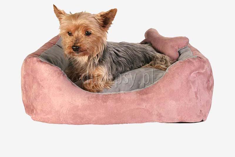 Legowisko dla małego psa sofa Chippy Trixie różowa, legowisko dla psa shih tzu, legowisko dla psa chihuahua, . Legowiska dla yorka. Legowisko dla maltańczyka. Sofa dla yorka różowa, legowiska dla małych psów. Legowisko dla małego pieska. Kanapa dla małego psa.
