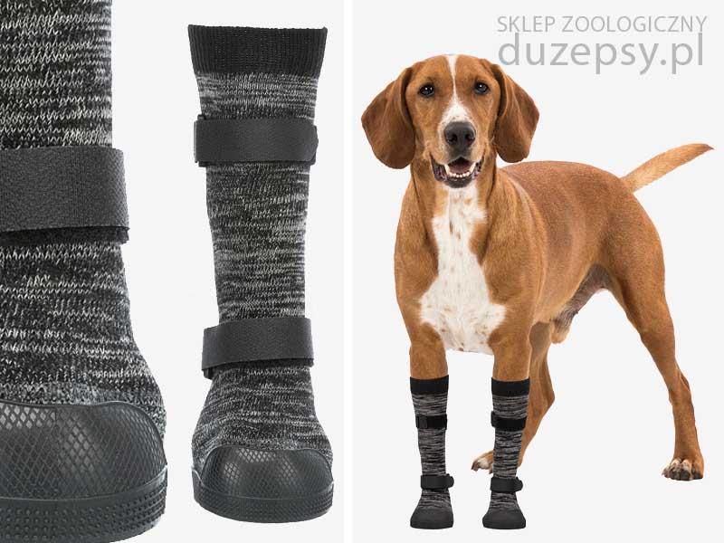 skarpety antypoślizgowe dla psa; skarpetki dla psa; skarpetki dla psów; skarpetki ochronne dla psa; skarpetki dla dużego psa; skarpetki dla owczarka niemieckiego; skarpetki dla psa goldena; skarpetki dla psa sklep; skarpetki dla psa labradora; skarpetki dla psa antypoślizgowe; skarpetki dla psa na zimę; skarpetki dla psa trixie; skarpetki dla psa medicine; skarpetki dla psa warszawa; skarpetki dla psa xl; skarpetki buty dla psa; buty i skarpetki dla psów