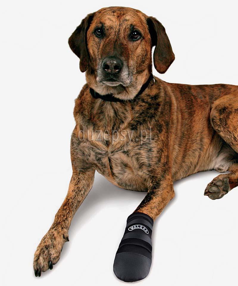 Buty dla psa ochronne WALKER CARE Trixie, buty dla psa sklep internetowy. Buty dla dużego psa. Buty dla owczarka niemieckiego. Buty dla labradora. Buty dla psów sklep internetowy.