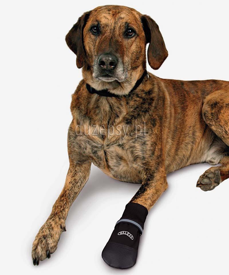 Trixie buty ochronne dla psa miękkie WALKER CARE. Buty ochronne dla psa miękkie WALKER Trixie. Buty dla owczarka. Buty dla yorka, buty dla yorków. Buty dla spaniela. Buty dla psa tanio. Buty dla labradora.