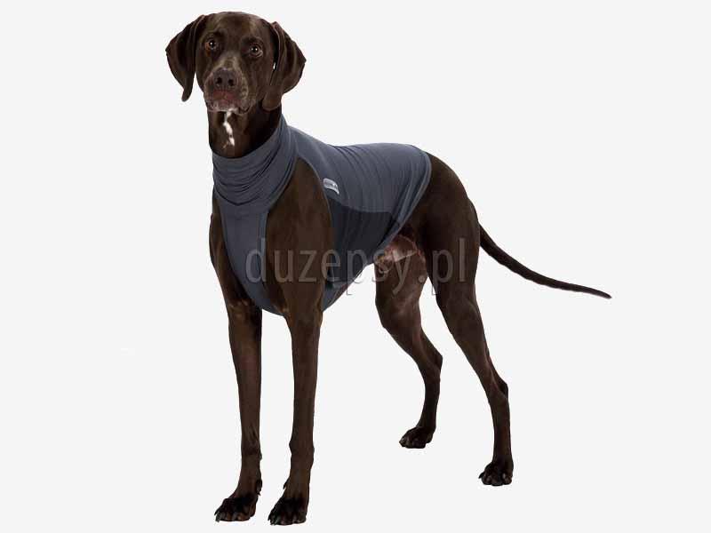 kamizelka przeciw kleszczom dla psa; ochrona przeciw pchłom dla psa; kamizelka insect shield dla psa; preparaty na kleszcze dla psa; sklep zoologiczny; DuzePsy.pl