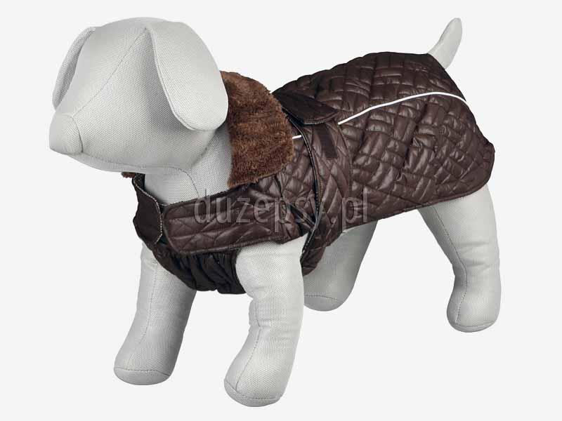 Kurtka zimowa dla psa w typie buldoga, mopsa ROUEN Trixie, ubranka dla psa buldog francuski, ubranko dla psa sklep internetowy, ubranka dla psów sklep pnline. Kombinezon dla psa kurtka zimowa z odpinanym kapturem. Kurtka zimowa dla psa. Kombinezon dla psa. Ubranka dla psów. Płaszczyk dla psa. Kurtka dla yorka. Płaszczyk dla psa zimowy. Ubranka dla psów. Ubranko dla yorka na zimę sklep zoologiczny Duzepsy.pl
