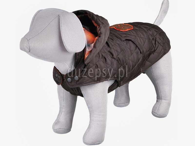 Kurtka zimowa dla psa pikowana z kapturem CERVINO Trixie. Kombinezon dla psa kurtka zimowa z odpinanym kapturem. Kurtka zimowa dla psa. Kombinezon dla psa. Ubranka dla psów. Płaszczyk dla psa. Kurtka dla yorka. Płaszczyk dla psa zimowy. Ubranka dla psów. Ubranko dla yorka na zimę sklep zoologiczny Duzepsy.pl