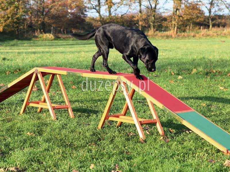 Kładka dla psa do Agility Trixie. Przeszkody do agility, tor agility, sprzęt do agility, wyposażenie placu do agility, akcesoria do agility, sklep zoologiczny, Duzepsy.pl