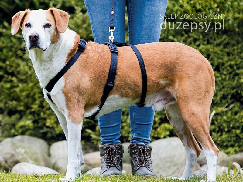 Szelki dla psa który ucieka; szelki dla psa STAY Trixie; szelki dla psa easy walk; szelki dla psa ciągnącego; szelki do ćwiczeń dla psa; szelki dla psa do nauki chodzenia; trixie szelki dla psa easy walk; szelki dla psa sklep internetowy; szelki dla psa który ucieka; szelki dla psów sklep