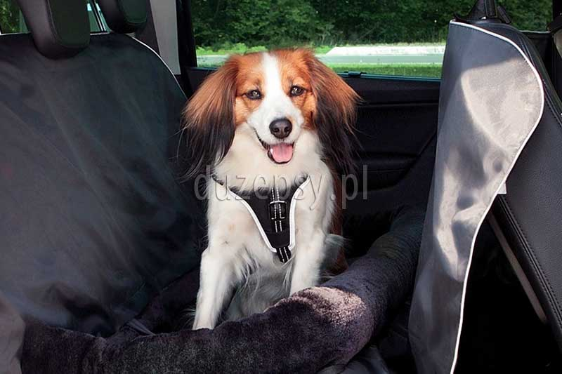Mata samochodowa dla psa Trixie. Trixie mata samochodowa dla psa; mata ochronna do samochodu dla psa; ciepła mata dla psa do samochodu; duża mata ochronna na siedzenia samochodu; maty dla psa do samochodu; pokrowiec do samochodu dla psa; mata ochronna na siedzenia do dużego samochodu; akcesoria dla psów sklep zoologiczny; hurtownia zoologiczna; DuzePsy.pl; mata do samochodu do przewozu psów, wyściółka dla psa do auta.