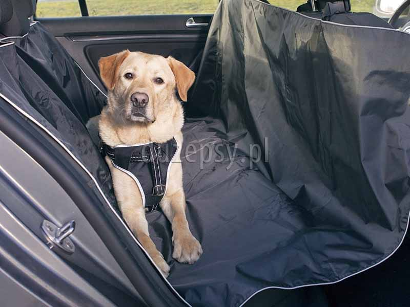 Trixie mata dla psa do samochodu; mata samochodowa dla psa; mata ochronna do samochodu dla psa; maty samochodowe dla psów; duża mata ochronna na siedzenia samochodu; maty dla psa do samochodu; pokrowiec do samochodu dla psa; mata ochronna na siedzenia do dużego samochodu; pokrowiec na siedzenie samochodowe, sklep zoologiczny; hurtownia zoologiczna; DuzePsy.pl; wyściółka dla psa do auta, mata do samochodu do przewozu psów.