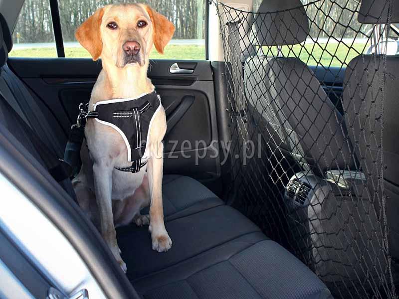 Siatka zabezpieczająca do samochodu; siatka zabezpieczająca do bagażnika; siatki do bagażnika; siatki do samochodów; siatka do bagażnika w kombi; przewóz psa samochodem; bezpieczny przewóz psa samochodem; sklep zoologiczny; DuzePsy.pl