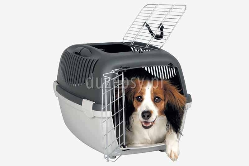 Transporter plastikowy dla małego psa. Transportery dla małego psa. Transportery dla psów. Box transportowy dla małego psa. Sklep zoologiczny internetowy DuzePsy.pl