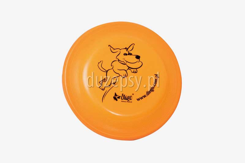frisbee; border collie; zabawki dla psów; zabawka dla psa; psy aktywne; jak się bawić z psem; agility; sklep zoologiczny; hurtownia zoologiczna